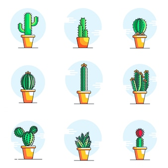 Set di illustrazioni di cactus