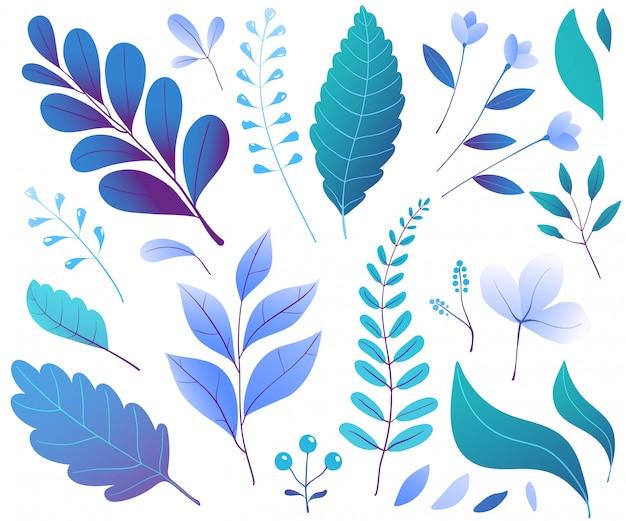 Set di illustrazioni di foglie di foresta blu