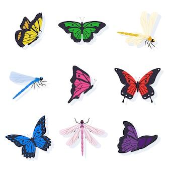 Set di illustrazioni di libellule e farfalle