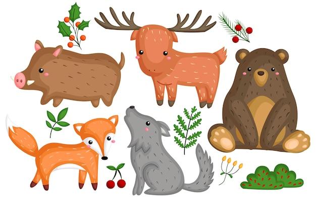 Set di immagini di animali selvatici