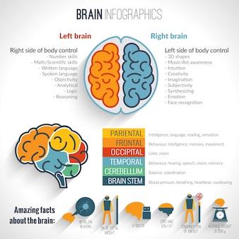 Set di inforgafi cerebrali