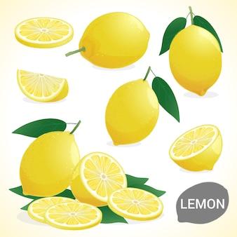 Set di limone in vari stili formato vettoriale