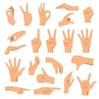 Set di mani