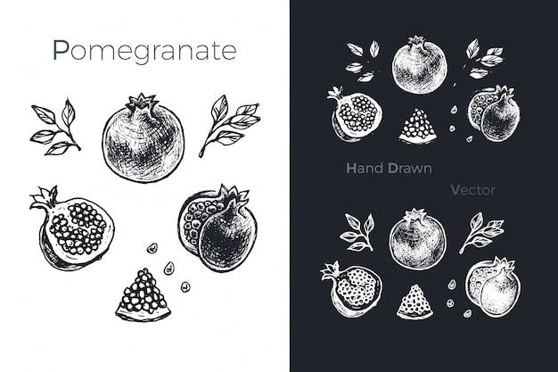 Set di melograno disegnato a mano