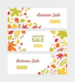 Set di modelli di banner web orizzontale autunnale con foglie di albero caduto e rametti con bacche
