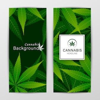 Set di modelli di copertina vettoriale con foglie di cannabis