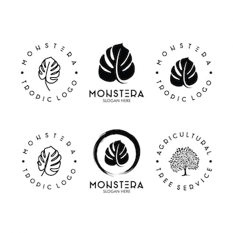 Set di monstera leaf logo