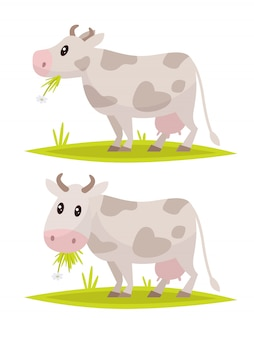 Set di mucche divertenti.