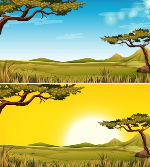 Set di paesaggio savana