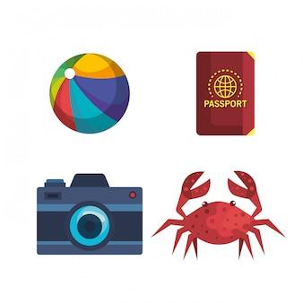 Set di pallone da spiaggia con passaporto e macchina fotografica con granchio