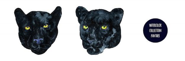 Set di pantera nera realistico dell'acquerello