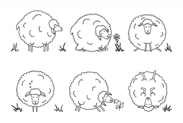 Set di pecore divertenti cartoon.