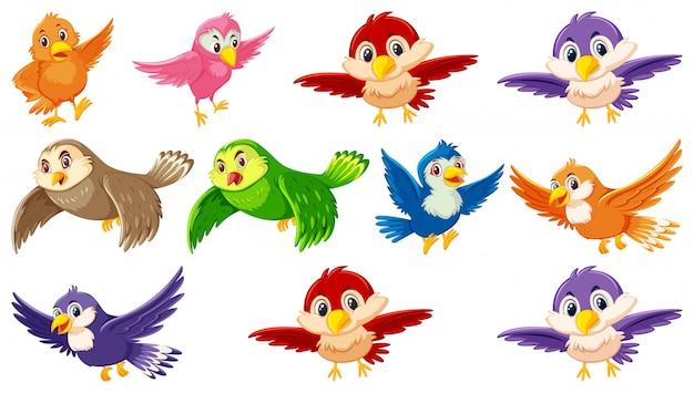 Set di personaggio dei cartoni animati di uccello