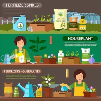 Set di piante da appartamento fertilizzanti e punte di fertilizzante.