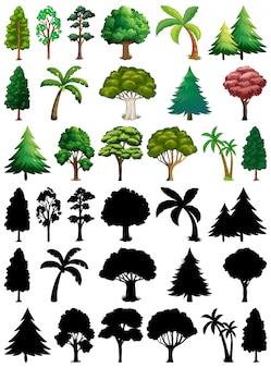 Set di piante e alberi con la sua silhouette