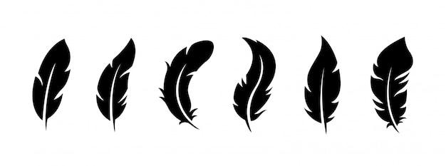 Set di piume di uccelli su uno sfondo bianco.