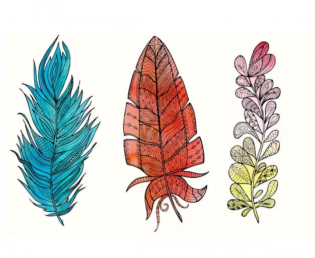 Set di piume disegnate a mano con doodle, zentangle, elementi floreali, vintage e priorità bassa dell'acquerello.