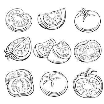 Set di pomodori disegnati a mano