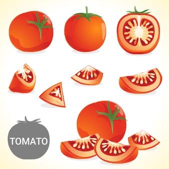 Set di pomodoro in vari stili formato vettoriale