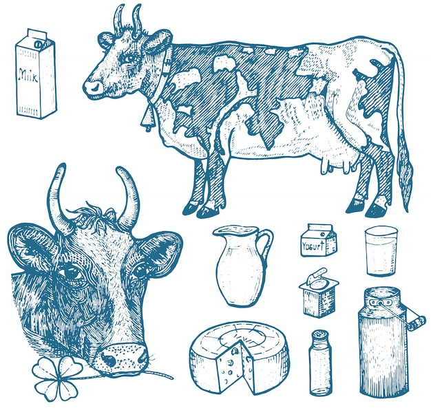 Set di prodotti lattiero-caseari, latticini, yogurt e formaggio, gelato, bottiglia, brocca, burro e frappè montato.