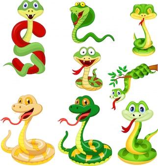 Set di raccolta del serpente dei cartoni animati