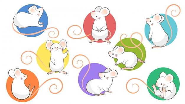 Set di ratti disegnati a mano, topo in diverse pose su bacground bianco.