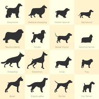 Set di razze di cani