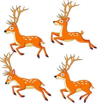 Set di renne dei cartoni animati