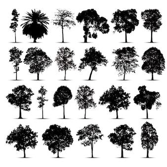 Set di sagome di albero