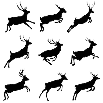 Set di sagome di cervo