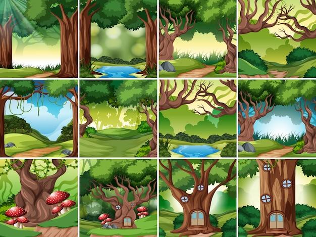 Set di scena di foresta pluviale