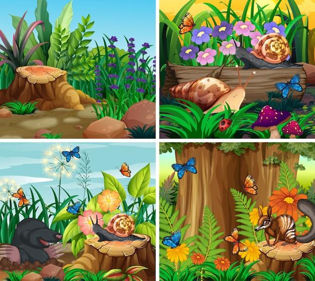 Set di scena di sfondo con tema natura