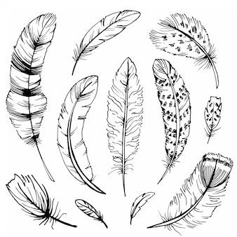 Set di schizzi di piume. illustrazioni disegnate a mano boho.