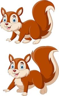 Set di scoiattoli simpatico cartone animato