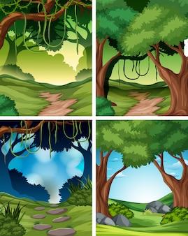 Set di sfondo foresta pluviale tropicale