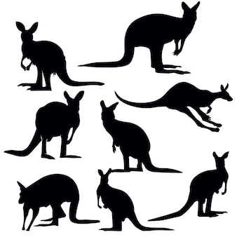Set di silhouette canguro