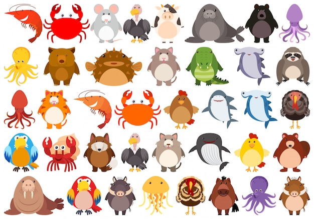 Set di simpatici personaggi di animali