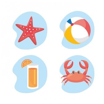 Set di stelle marine con pallone da spiaggia e succo di frutta con granchio. isolato