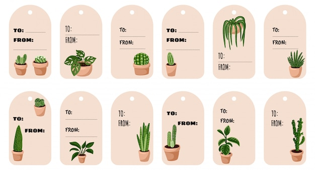 Set di tag regalo hygge in vaso piante succulente. accogliente collezione di etichette in stile scandinavo lagom