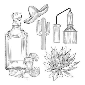 Set di tequila. bicchierino e bottiglia di tequila, sale, lime, agave blu, cubo di rame, sombrero, cactus.