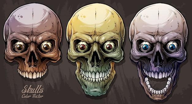 Set di teschi umani colorati grafici dettagliati