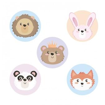 Set di teste di animali selvatici carino