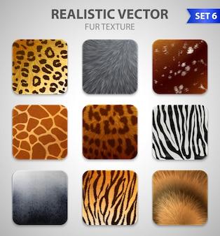 Set di texture di pelliccia di animali selvatici