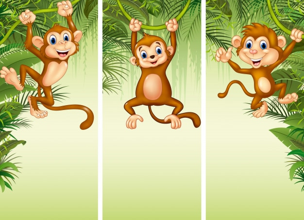 Set di tre scimmie