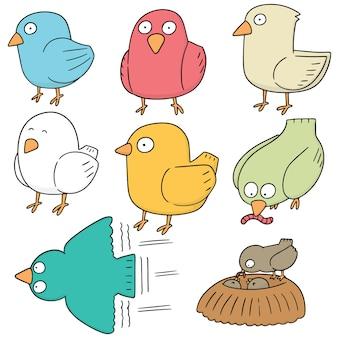 Set di uccelli