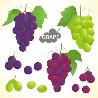 Set di uva in vari stili di formato vettoriale