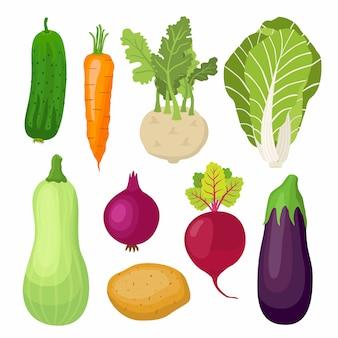 Set di verdure da giardino