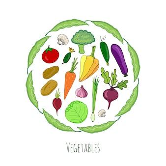 Set di verdure disegnati a mano. isolata collezione vettoriale doodle.