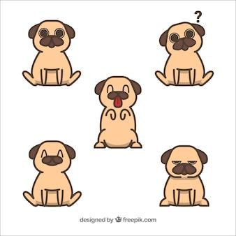 Set divertente di pugs incantevoli