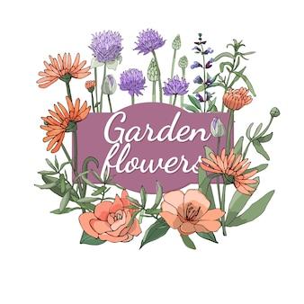 Set floreale estate ed i fiori e le erbe del giardino isolati primavera con calendula, camelia, erba cipollina, salvia, salvia, dragoncello.